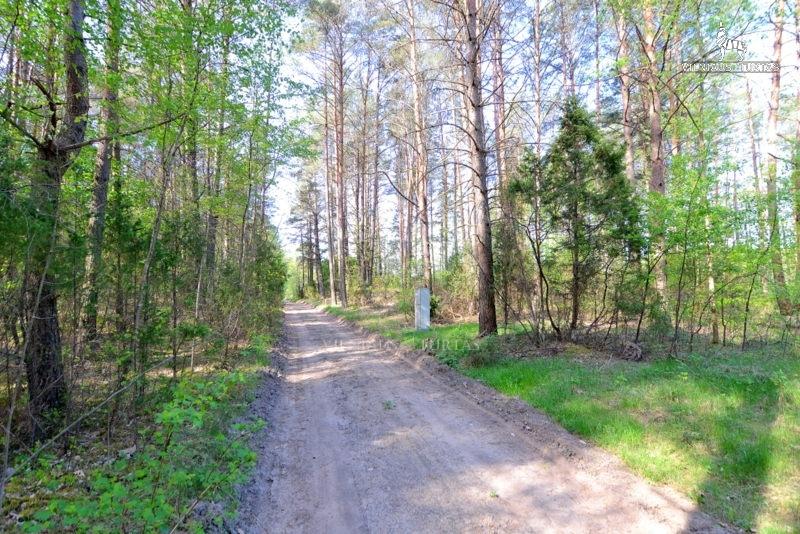Druskininkų sav., Viečiūnų k., 478 a, 60 000 €