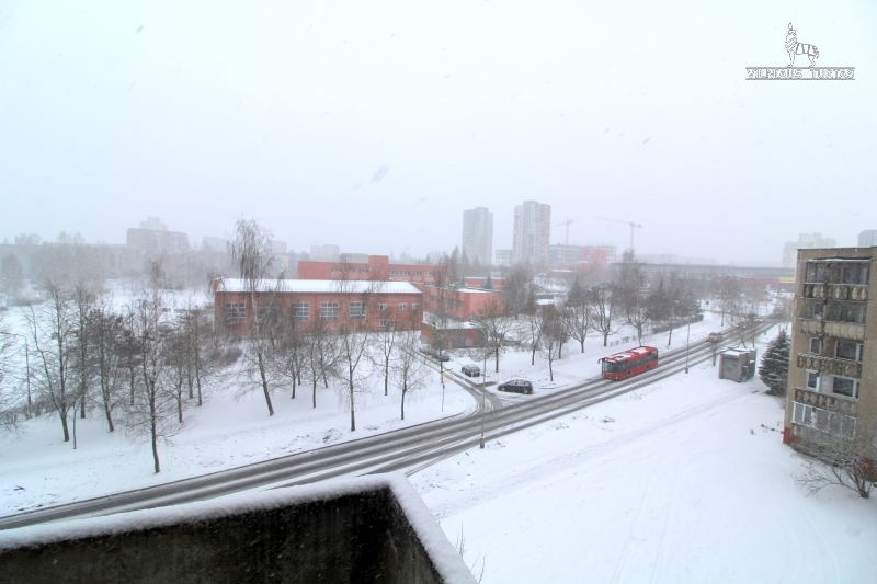 Parduodamas butas Šeškinė Paberžės g. (Vilnius) skelbimo nuotrauka